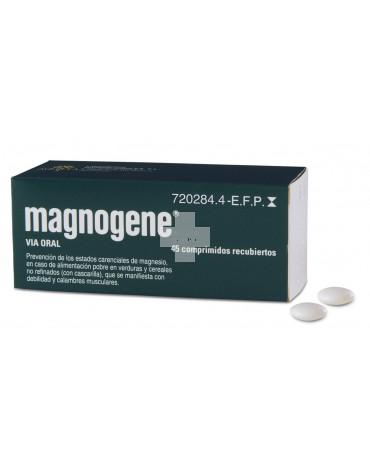 MAGNOGENE (45 COMPRIMIDOS RECUBIERTOS)